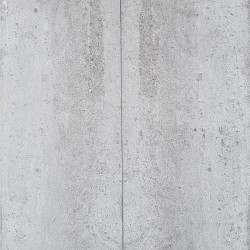 Fantastic Grey Antique Limestone