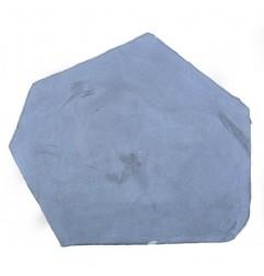 Bluestone Honed Random shape Stepping Stone