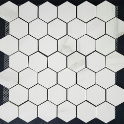 Hexagon Statuario Polish Porcelain Mosaic 48x48