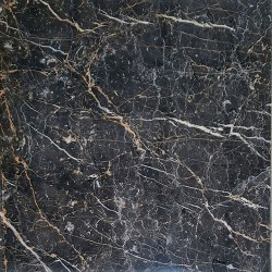 Black and Gold Polished Marble