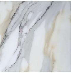 Italian Calacatta Oro Honed Marble