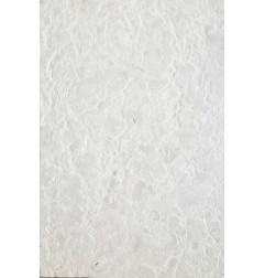 Grigio Perla Antique Bullnose Limestone
