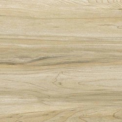 Acacia Gold Max Matt Timber Porcelain Tile